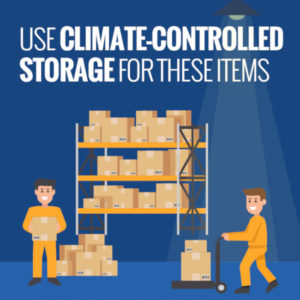 Use Climate-Controlled Storage for These Items [infographic]