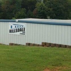 Hillsdale mini storage container